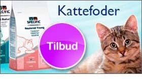 kattefoder3